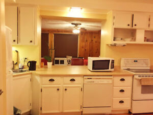 Responsible & quiet roommate wanted on South End