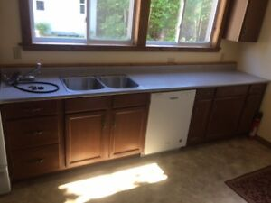 FOR SALE:     Kitchen Counter/Sink/Tap - Great Shape!