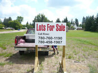 1 large lot for sale