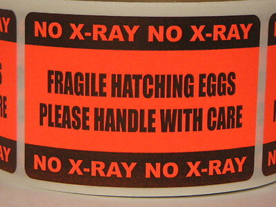 250 Sticker Labels Fragile Hatching Eggs Handle W. Care No X-ray 2x3 Fluor Red