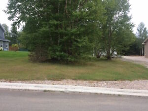 5 Whiffen Drive, Pasadena-Perry and Cherie-NL Island Realty