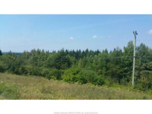 Land For Sale In Moncton Real Estate Kijiji Classifieds
