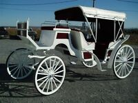 carriages sleighs wagonettes wagons carts ...we have them all