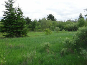 Sudbury Area Approx. 111.25 Acres Estate - $2.5K down