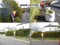 Gardeners grass cutting hedge cutting garden clearances belfast lisburn carrickfergus north down