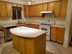 SOLID MAPLE WOOD KITCHEN CABINETS WITH DISHWASHER AND STOVE