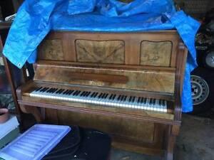 Piano - Upright Mignon Forestville Warringah Area Preview