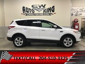 2014 Ford Escape SE / All Wheel / Financing Available