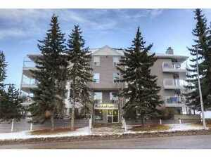 Two Bedroom Apartment in Down-Town 17 Ave SW Calgary