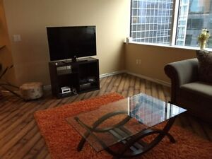 Beautiful downtown apartment for rent starting Dec. 1 Regina Regina Area image 6