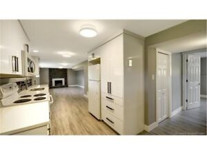 3 Bed 1 Bath bright above-ground basement suite with view-June 1