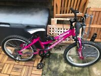 Fantastic Girl's Bike 20 inch 7 months old almost new