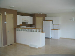 Available JUNE 1 - Spacious 2 bedroom bi-level condo in Anders