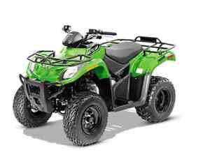 2016 300 ATV.