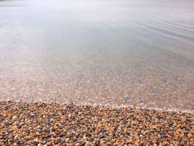 Sussex Coastal Driftwood Supplies