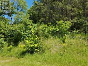 VACANT  LAND  RESIDENTIAL  1.43 ACRES