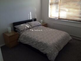 Large Double Bedroom in 3 Bedroom House With Own Shower Room