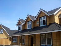 Professional Roofing and Siding