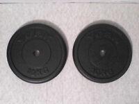 44 lb 20 kg Metal Dumbbell Barbell Weights - Heathrow