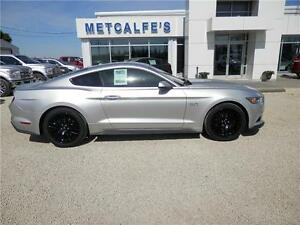 2015 Ford Mustang GT 5.0L Premium 50th Anniversary Package
