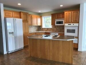 Custom Kitchen Cabinets fridge, oven, range and warming drawer