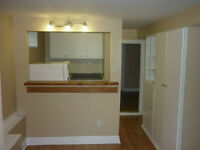 1 bedroom, lower level apartment for rent July 1st - Hintonburg