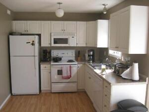 Fully Furnished 2 bedroom Townhouse - For rent April 1, 2017
