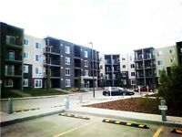 1350/month NW Two Bed room condo for rent sept 1