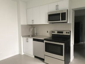 1 bedroom aptment, available now, the ANNEX, Dupont & Dovercourt