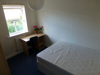 Single room in East Oxford, cozy house, garden, bicycle and car parking