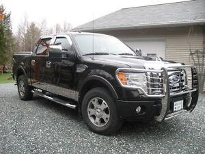 2010 Ford F-150 FX4 Pickup Truck