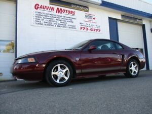 2004 Ford Mustang 40th Anniversary Package, Loaded, Upgraded Ste