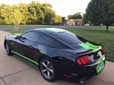 2015 16 17 Mustang YOUR TEXT Side stripes Stripe Graphics Ecoboost GT V6 Decals