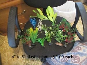 Fish,Tanks and accessories for sale