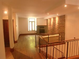 4 BEDROOM HOME- IN THE HEART OF THE McGILL GHETTO- $3,790-