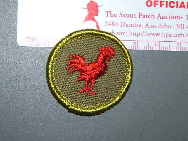 Boy Scout Merit Badge Poultry keeping circa