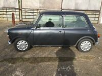 Rover Mini EquinoX 1996 P, 77500 miles, MoT to 26 November 2018, full service history