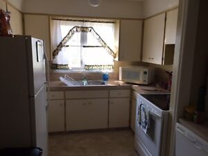Large, Clean, bright bungalow for rent
