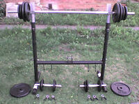 176 lb 81 kg Metal Rack with Dumbbell & Barbell Weights