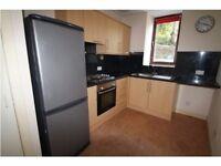 spacious ground floor 2 bedroom flat to rent
