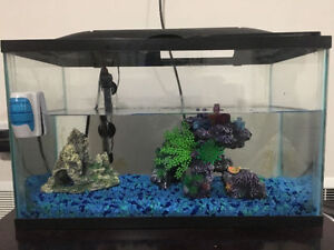 Fish Tank for $25