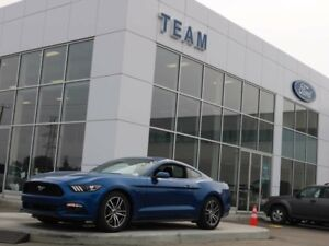 2017 Ford Mustang ECOBOOST, 100A, SYNC, REAR CAMERA, KEYLESS ENT