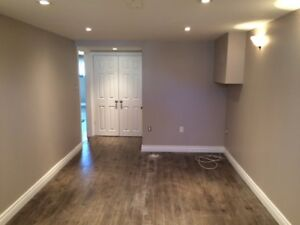 Newly Renovated 2 Bedroom Lower Level on the West Mountain