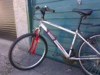 Adolescent / Adult Mountain Bike