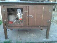 Rabbit hutch brand new (handmade)