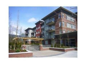 $1275 / 1br - 450ft2 for rent in Port Moody