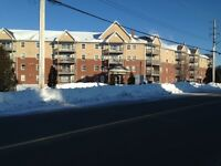 Large3 bedroom apartment, Clayton Park West - available Sept 1