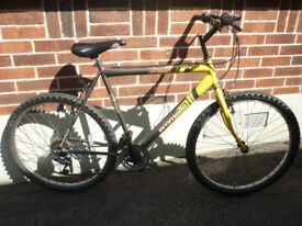 RETRO EMMELLE DISCOVERY MANS LARGE FRAME BIKE / 15 SPEED ! GOOD CLEAN CONDITION !
