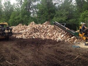 MOBILE FIREWOOD PROCESSING | www.SummitForestry.com | 6138533473