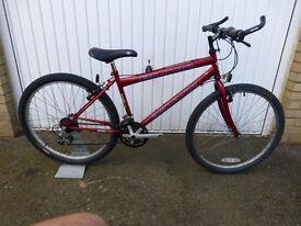 Falcon Warrior cycle / bike. Very good condition. Shimano gears